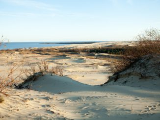 On the Curonian Spit