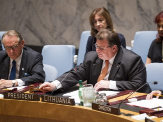 Linas Linkevičius at UN Security Council