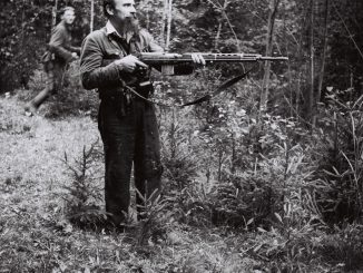 A Lithuanian partisan