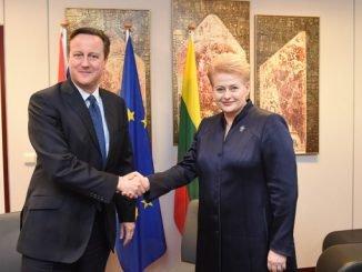 UK Prime Minister David Cameron and Lithuanian President Dalia Grybauskaitė