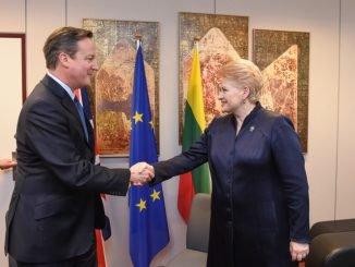 David Cameron and Dalia Grybauskaitė