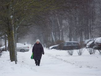 A senior citizen in Vilnius