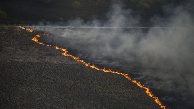 Forest fires in Chernobyl zone