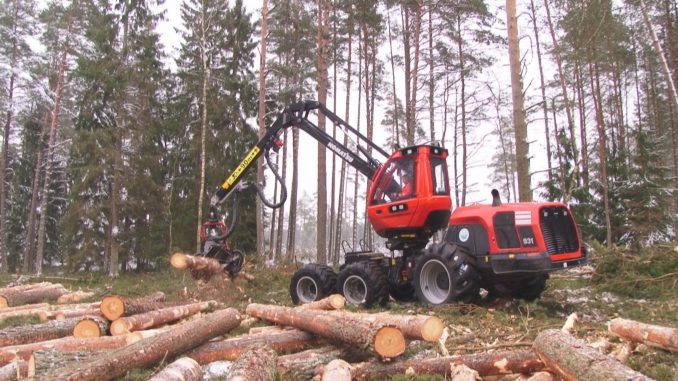 Work in a forest
