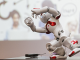 Nao the human-like robot working out at the 10th Anniversary Event of EBN in Vilnius    Photo © Ludo Segers @ The Lithuania Tribune