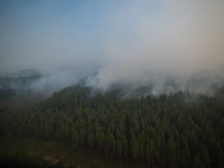 Wildfires in Latvia. Photo: Artūrs Andrejs Blomkalns, Valsts policija