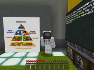 Minecraft in social studies