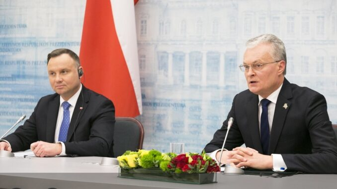 Polish and Lithuanian relations at a crossroads: both positive and negative aspects of the new government